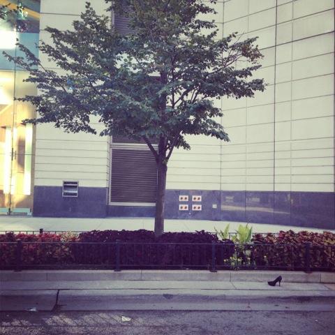 """""""Shoe."""" McClurg Court, Chicago, IL. 8:45am, September 29, 2013."""